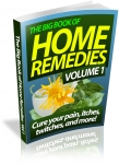Big Book of Home Remedies