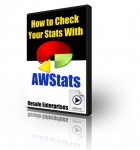 How to Check Your Stats With AWStats