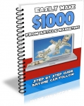 Easily Make $1000 From Article Marketing (PLR)