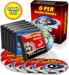 6 Marketing PLR Audio eBooks